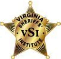 VSI Badge png